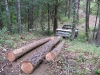 06-skidding-logs-with-pickup