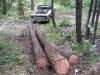 07-log-skidding