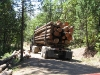 17-loaded-log-truck