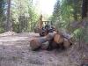 20-log-deck