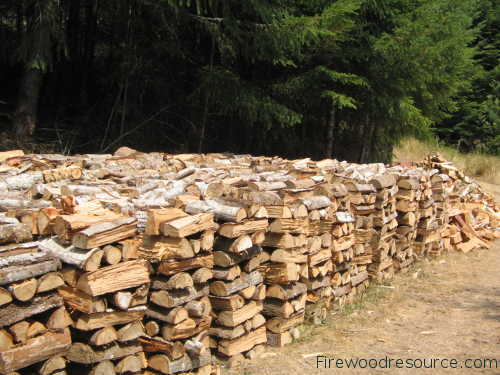 Seasoned Firewood in Half Cord Stacks