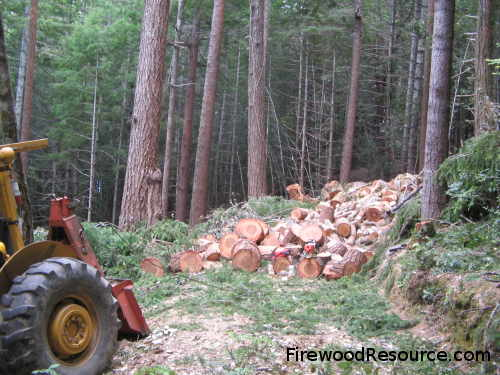 Firewood Production
