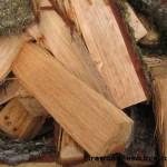 Green Tanoak Firewood