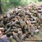 Hardwood Firewood Rounds