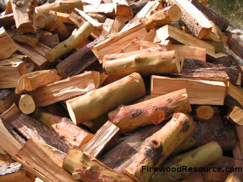 Green Madrone Firewood