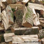 Green Pepperwood Firewood