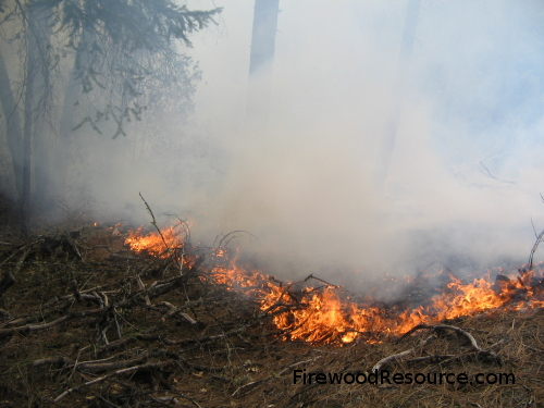 Controlled or Prescribed Burn