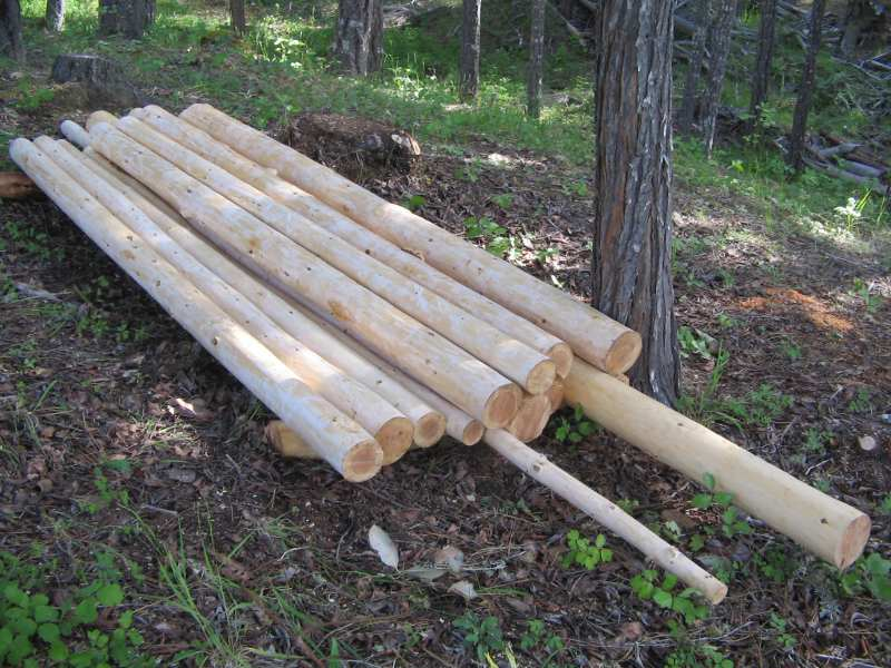 Peeled logs for sale