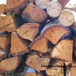 Tanoak Firewood