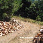 Piles of Firewood