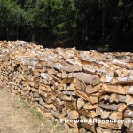 Rows of Firewood