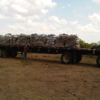 Mesquite Firewood Pallets
